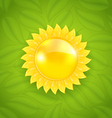 Abstract sun on green leaves texture eco friendly vector image