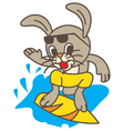 Surf Rabbit vector image