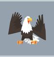 north american bald eagle character symbol of usa vector image