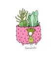 Cartoon cute succulents in pot vector image