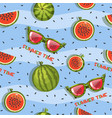 pattern of watermelon slices and glasses vector image