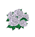 Hand Drawn Wedding Rose Bouquet vector image