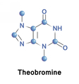 Theobromine or xantheose cacao vector image