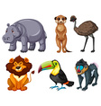 Different kinds of wild animals set vector image
