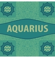 Hand-drawn zodiac Aquarius with ethnic floral vector image