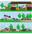 set of horse riding interior flat posters vector image