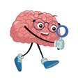 cute brain searching something vector image