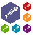 fish bone icons set hexagon vector image