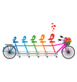 tandem bicycle with birds family vector image vector image
