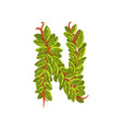 letter n english alphabet made of tree branches vector image