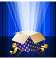 Magic box with mysterious light vector image