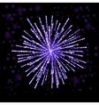 Firework Lights up the Sky on Black vector image
