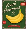 Fresh bananas Banana in retro style vector image