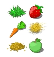 Animals food corn grass hay carrot vector image