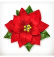 Poinsettia Christmas Star vector image vector image