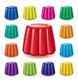gelatin jelly vector image