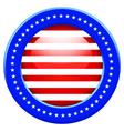 USA button vector image