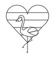 flamingo bird and striped heart love vector image