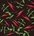 Seamless chili and oregano texture vector image
