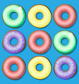 a set of sweet donuts vector image