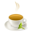 cup of hot green tea vector image vector image