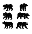 black Bear symbol vector image