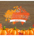 Autumn Leafs And Pumpkins Frame vector image