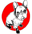 french buuldog one line design vector image