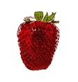 Sweet Tasty Strawberry  EPS10 vector image vector image