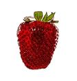 Sweet Tasty Strawberry EPS10 vector image
