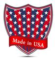 American English Pennant Banner Flag Americans Blu vector image