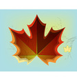 Red maple leaf on blue background vector image vector image