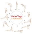 Hatha Yoga Surya Namaskar asanas vector image