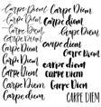 Carpe diem phrase set vector image