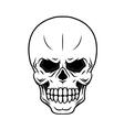Danger cartoon skull vector image