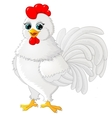 Rooster cartoon white vector image