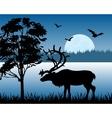 Reindeer beside lake vector image