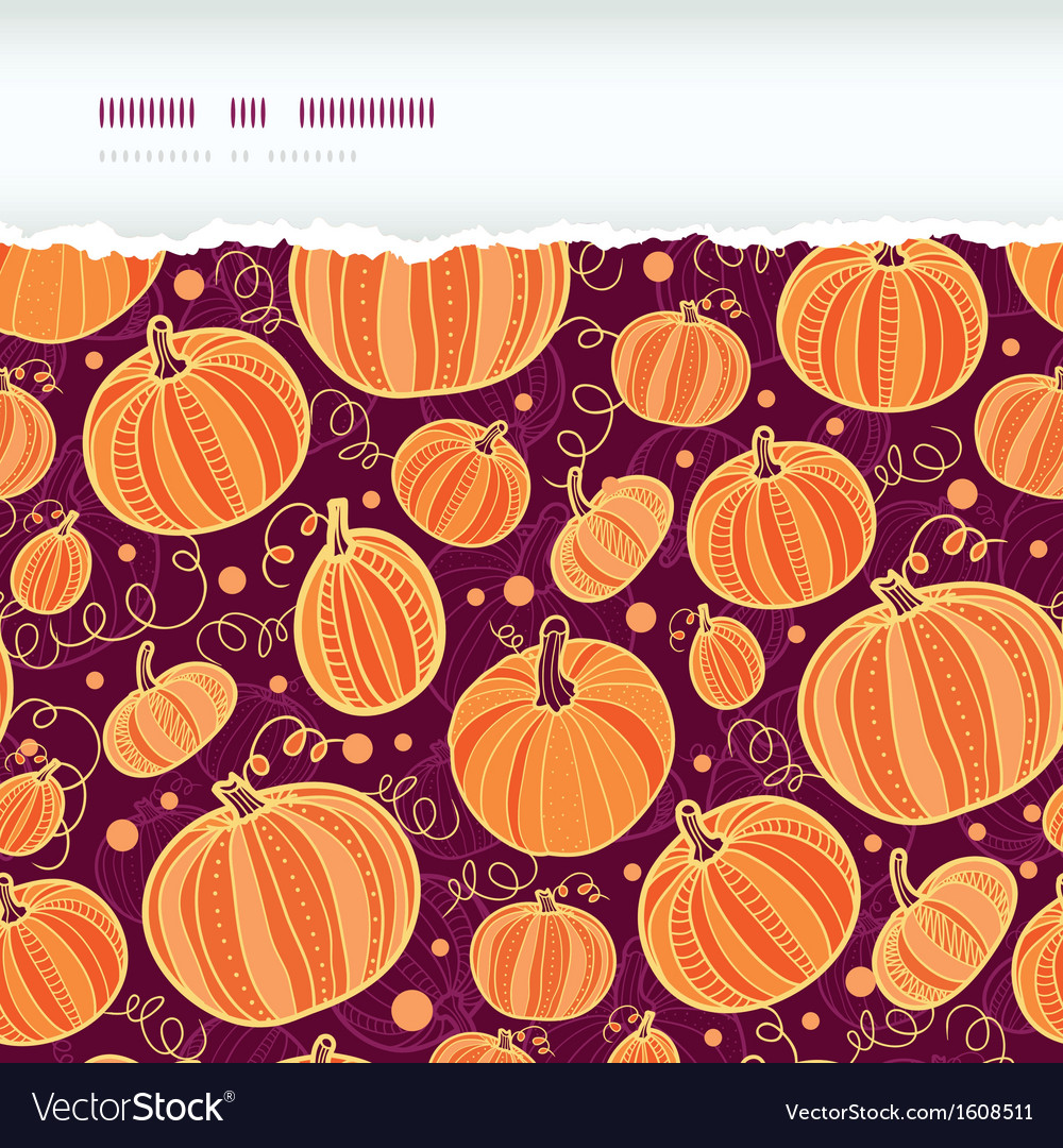 Thanksgiving pumpkins horizontal torn seamless vector