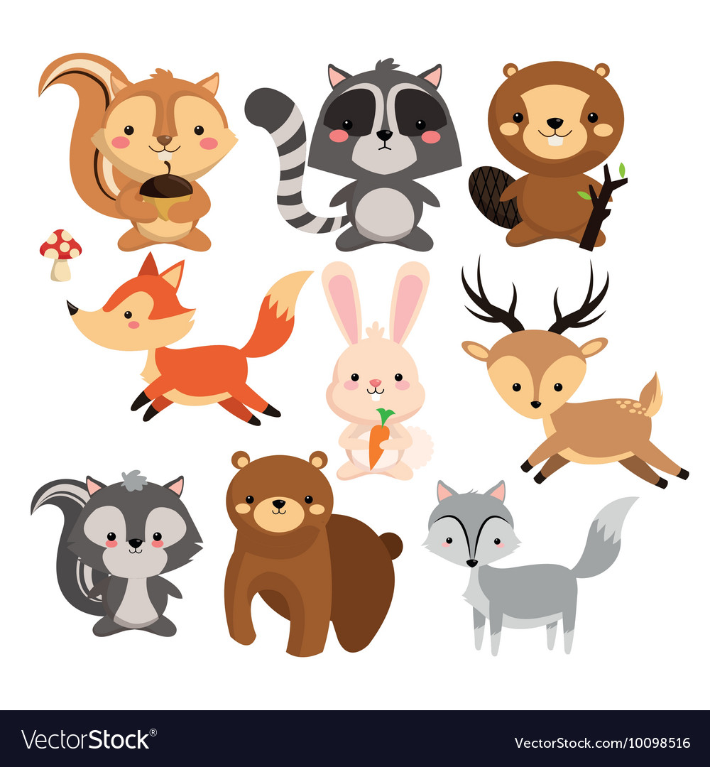 Squirrel raccoon beaver fox rabbit reindeeer skunk vector
