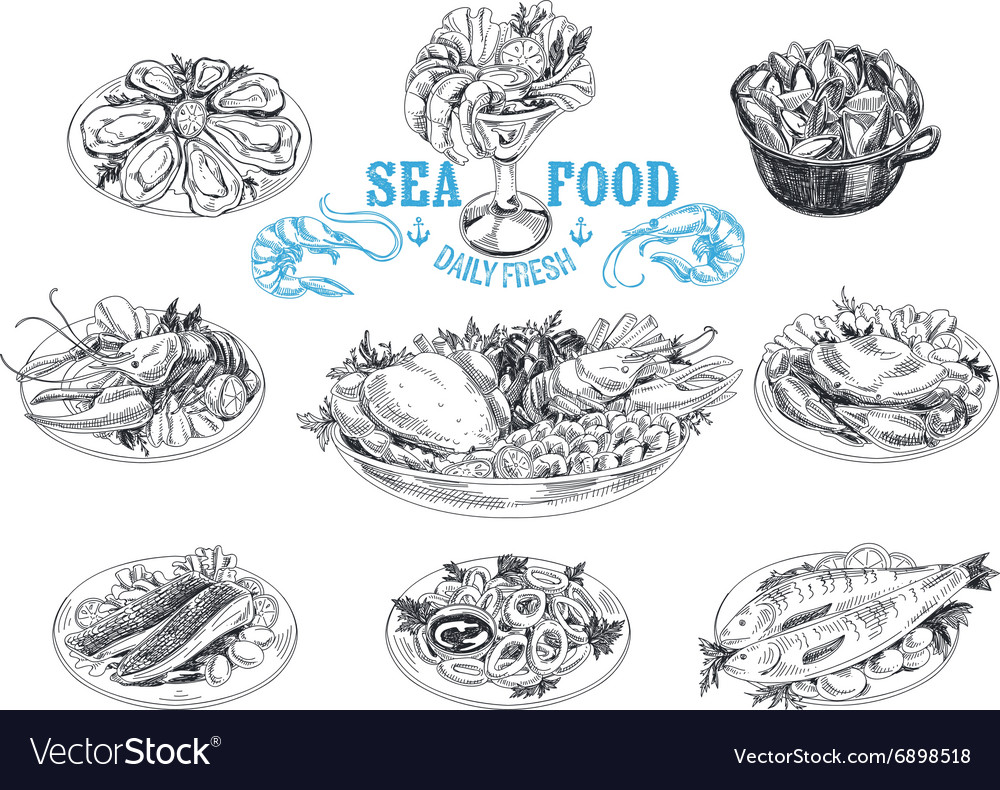 Hand drawn with seafood vector