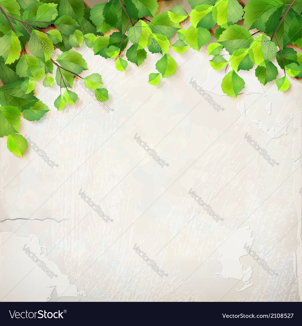 Tree branch leaves plaster wall background vector