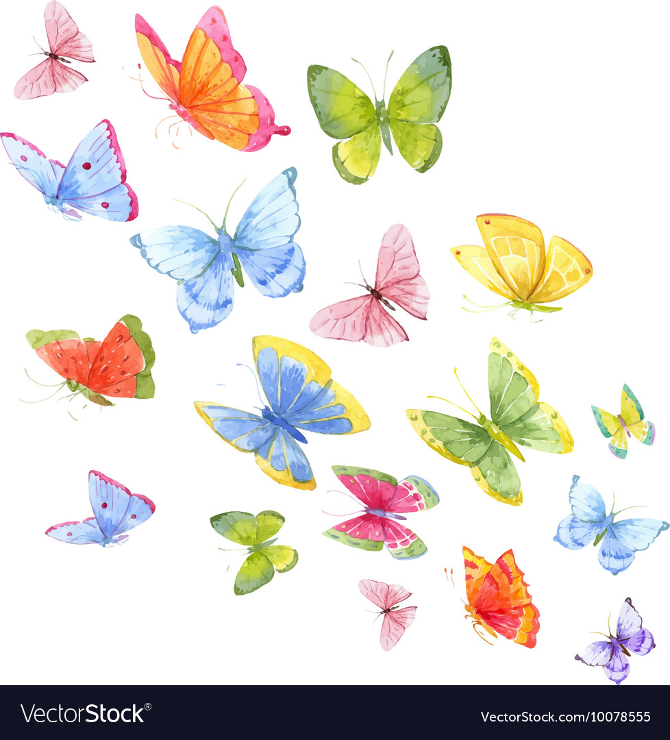 Colorful watercolor butterflies vector