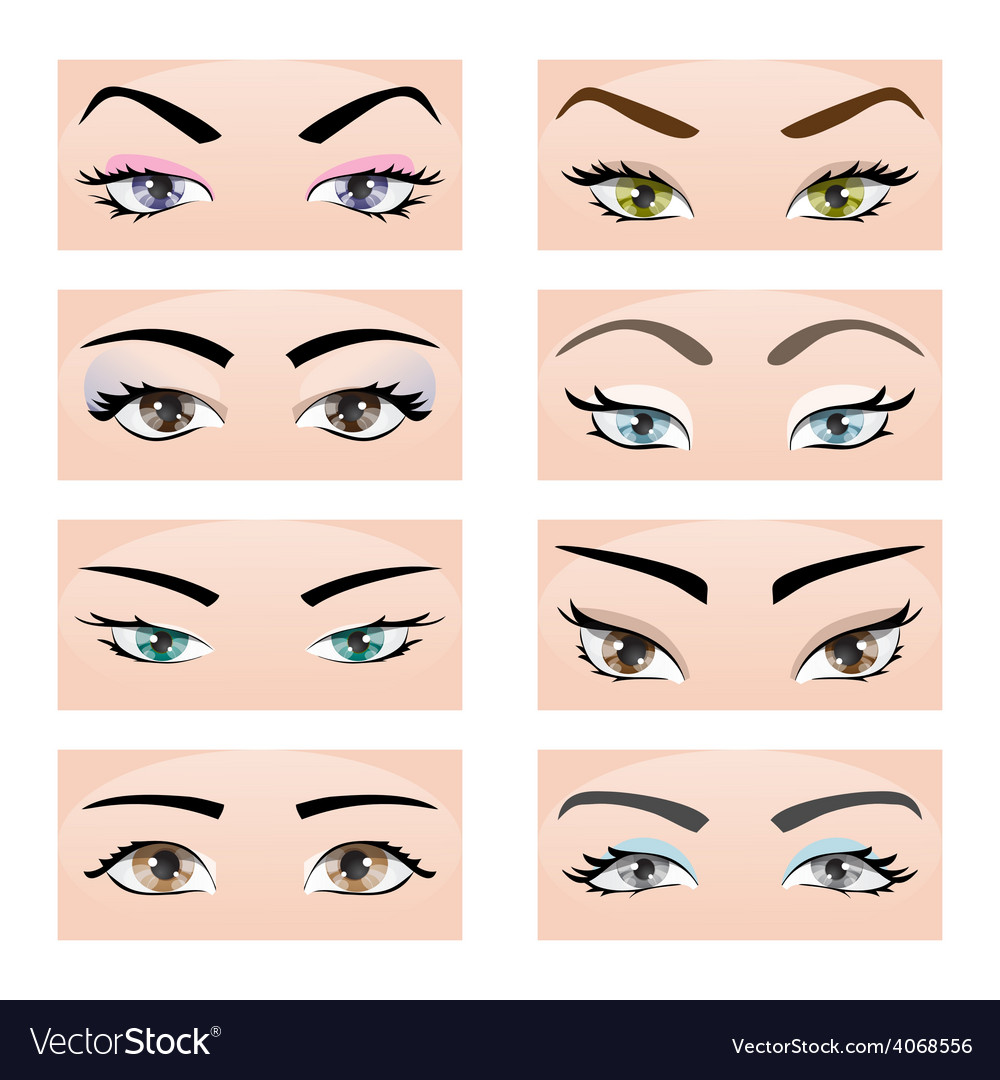 Set of female eyes and eyebrows vector