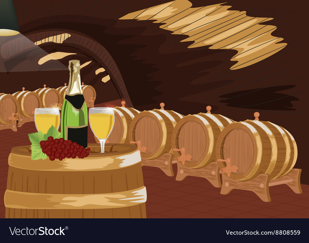 Wine cellar with bottle of champagne vector