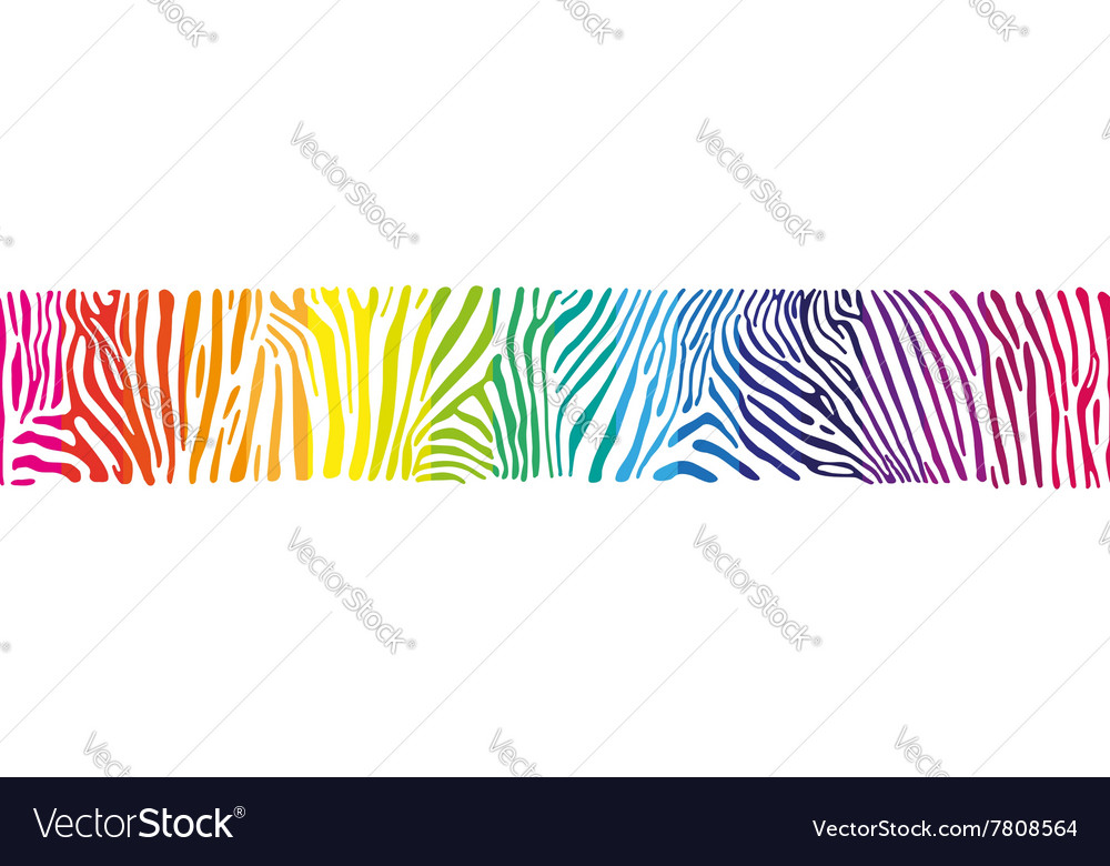 Background with zebra skin in the rainbow colors vector