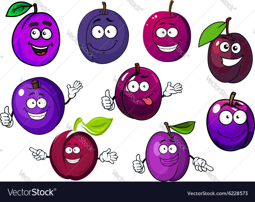Cartoon fresh purple plum fruits vector