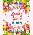 spring time flowers greeting card vector image