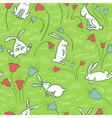 background with bunnies vector image vector image