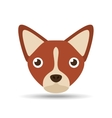lovely head puppy dog chihuahua brown vector image