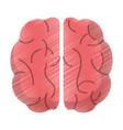 drawing brain human idea intelligence vector image